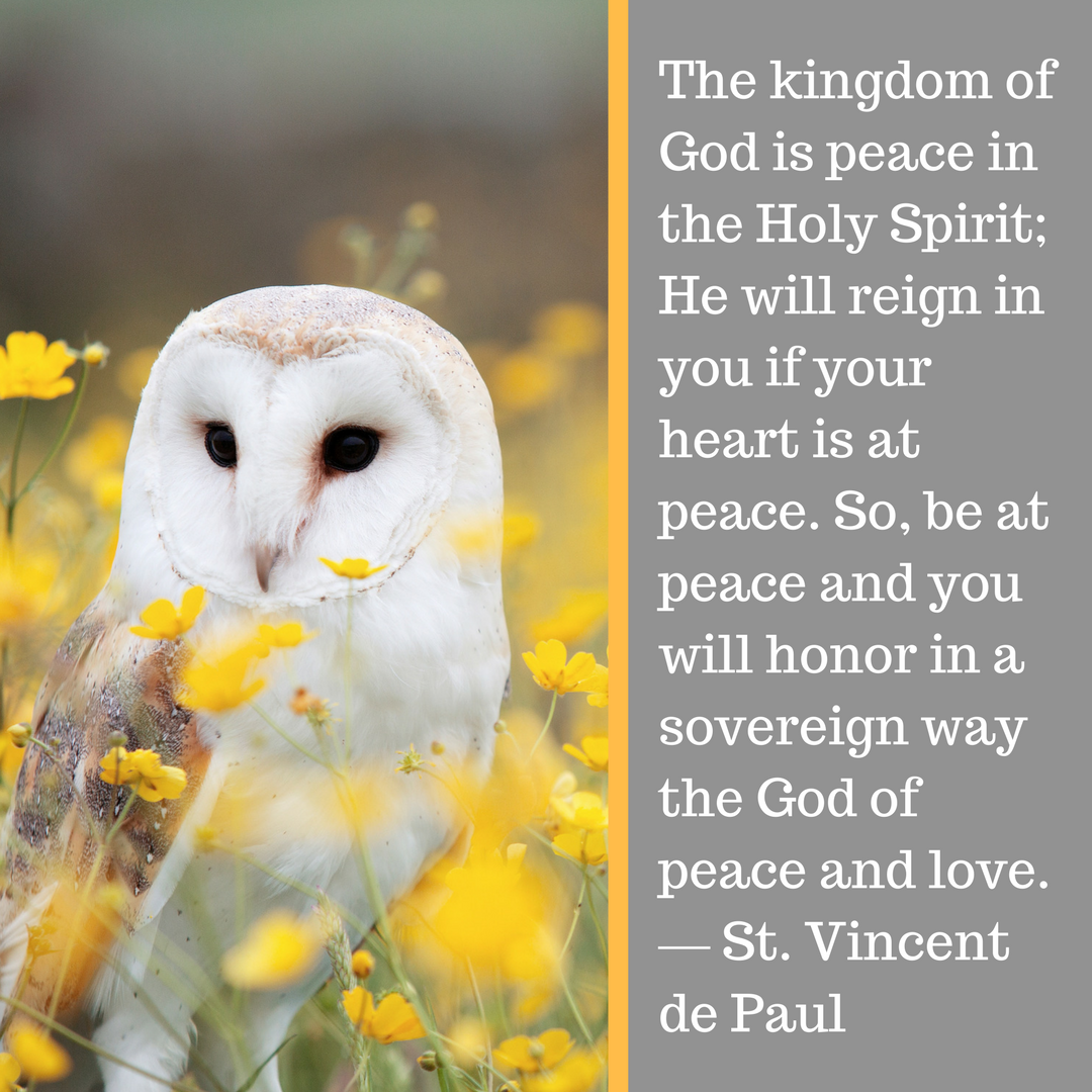 The kingdom of God is peace in the Holy Spirit; He will reign in you if your heart is at peace. So, be at peace and you will honor in a sovereign way the God of peace and love. ― St. Vincent de Paul